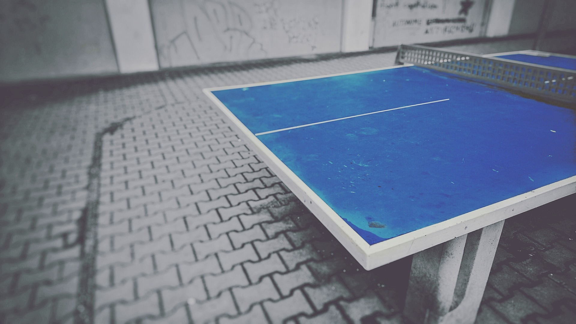 table-tennis-1648005_1920.jpg